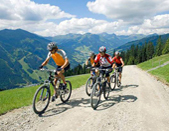 biking cycling tours